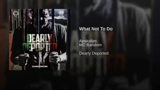 What Not To Do @apakalips feat @area51random from Album